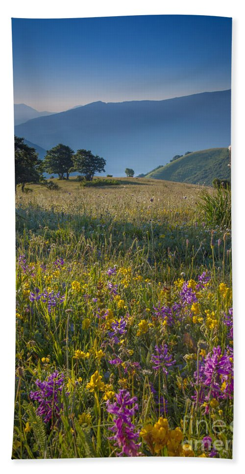 Field Bath Sheet featuring the photograph Umbria Wildflowers by Brian Jannsen