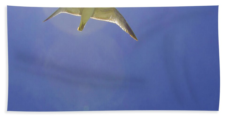 susan Molnar Hand Towel featuring the photograph Under His Wings II by Susan Molnar