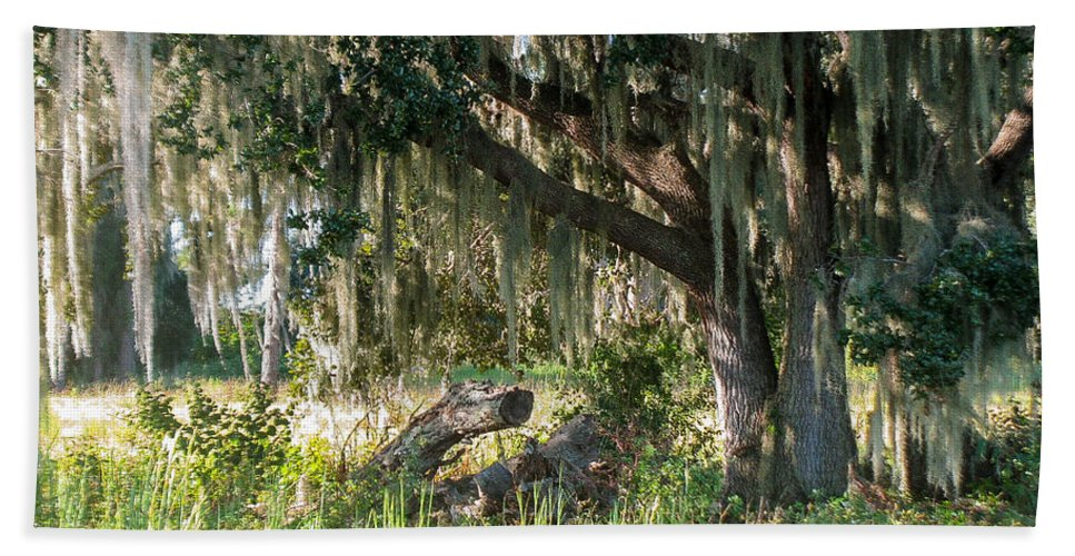 Oak Tree Hand Towel featuring the photograph Under The Live Oak Tree by Zina Stromberg