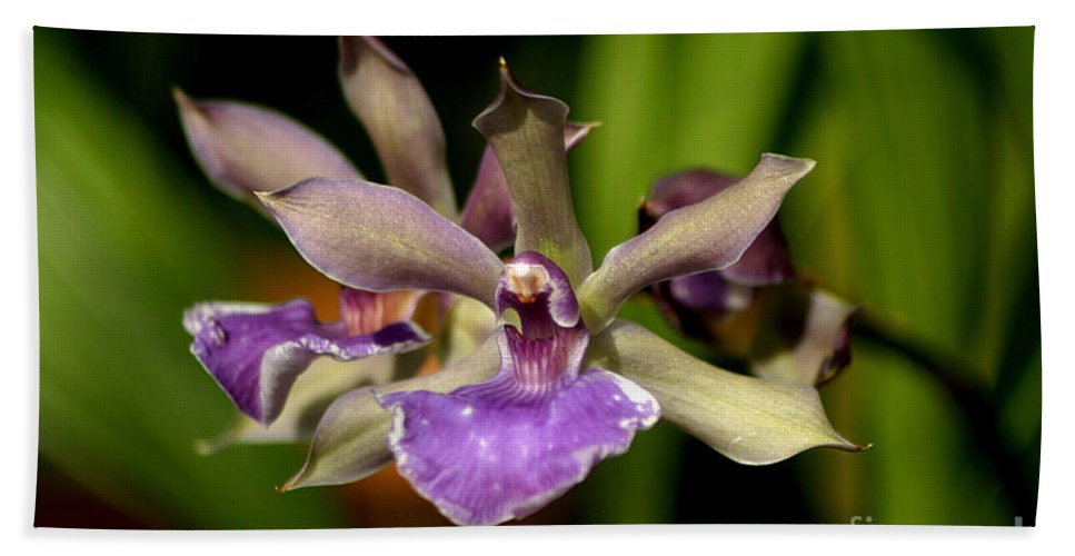 Orchid Hand Towel featuring the photograph Unusual Orchid by Living Color Photography Lorraine Lynch
