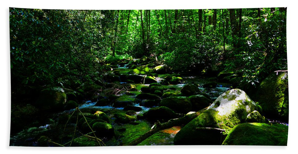 Fine Art Hand Towel featuring the photograph Up A Little River by David Lee Thompson