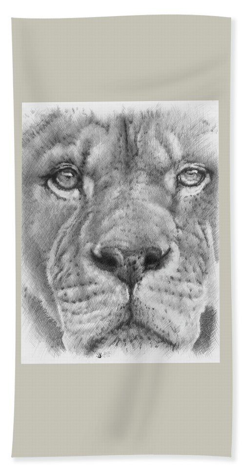 Lion Bath Sheet featuring the drawing Up Close Lion by Barbara Keith