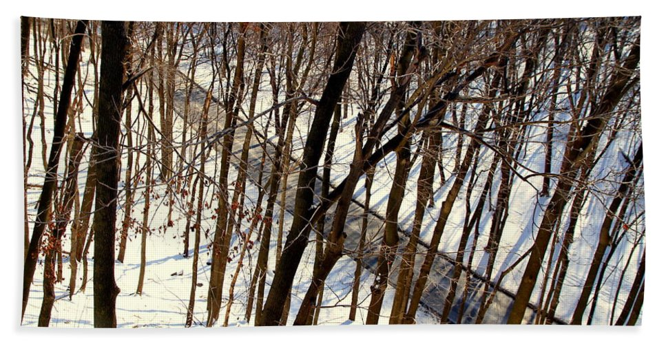 Winter Hand Towel featuring the photograph Urban Forest At Dusk by Valentino Visentini