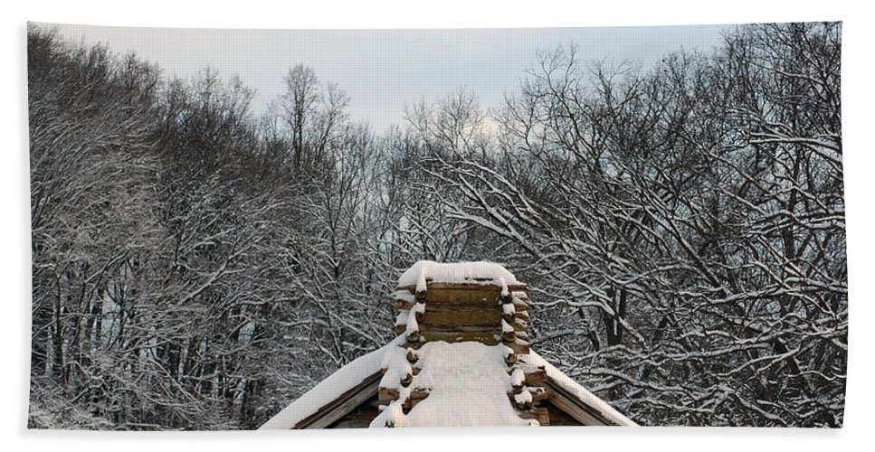 Valley Forge Bath Sheet featuring the photograph Valley Forge Winter 1 by Terri Winkler