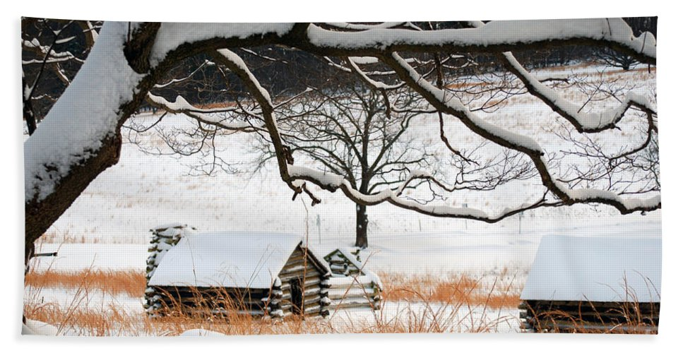 Valley Forge Bath Sheet featuring the photograph Valley Forge Winter 14 by Terri Winkler
