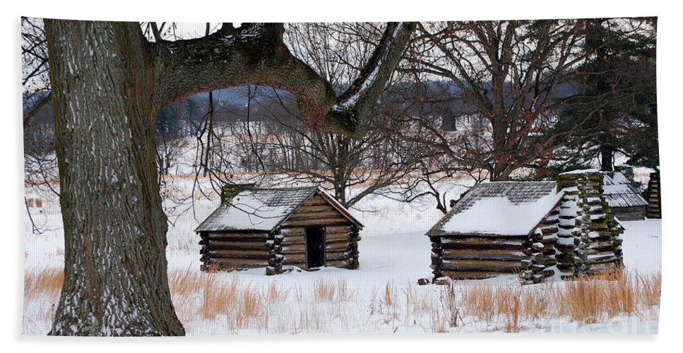 Valley Forge Bath Sheet featuring the photograph Valley Forge Winter 6 by Terri Winkler