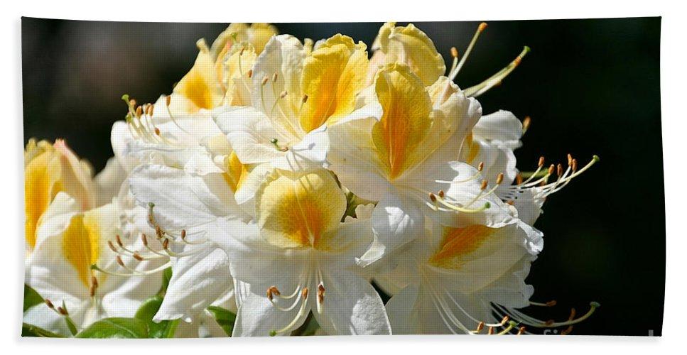 Flower Bath Sheet featuring the photograph Vanilla Butterscotch by Susan Herber
