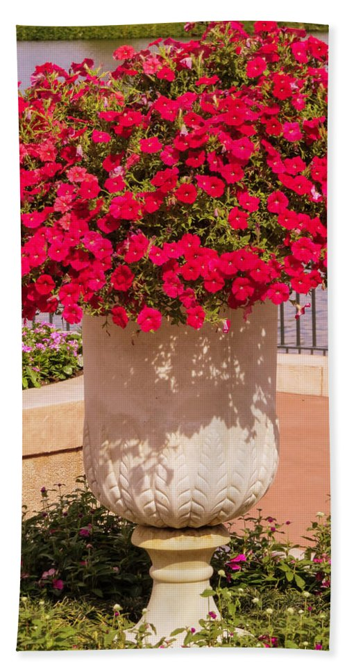 Petunia Hand Towel featuring the photograph Vase Of Petunias by Zina Stromberg