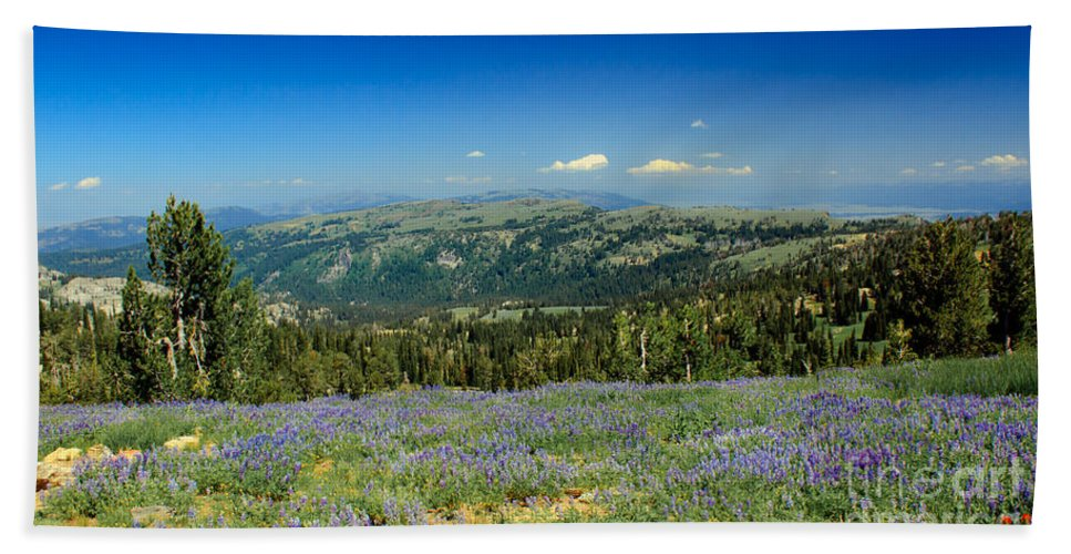 Southwest Idaho Hand Towel featuring the photograph Vast View And Lupine by Robert Bales