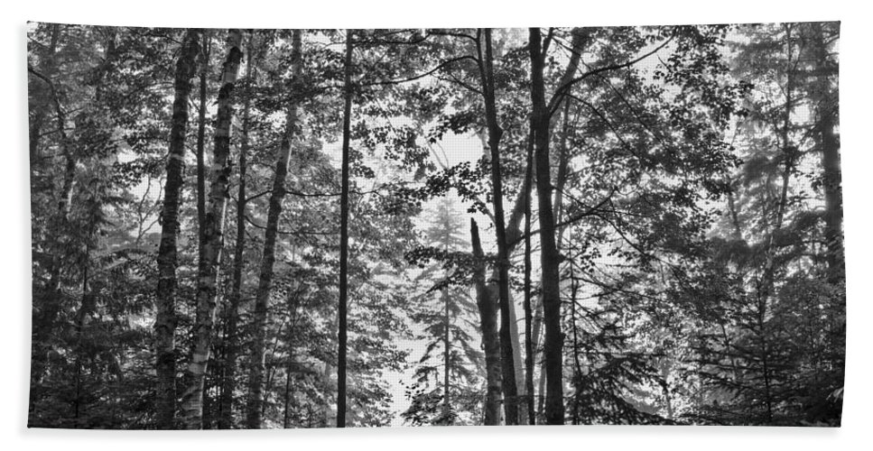 Vermont Bath Sheet featuring the photograph Vermont Forest Sunrise Ricker Pond Black And White by Andy Gimino