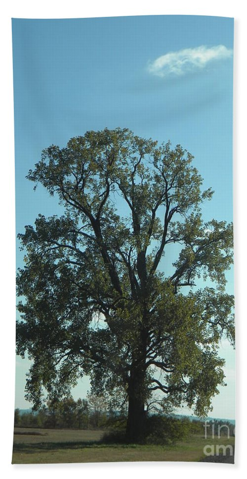 Tree Hand Towel featuring the photograph Vertical Tree by Nathanael Smith