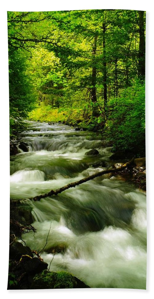 Water Hand Towel featuring the photograph Viento Creek In June by Jeff Swan