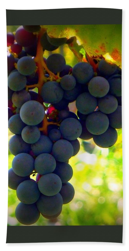 Vine Purple Grapes Bath Sheet featuring the photograph Vine Purple Grapes by Susan Garren