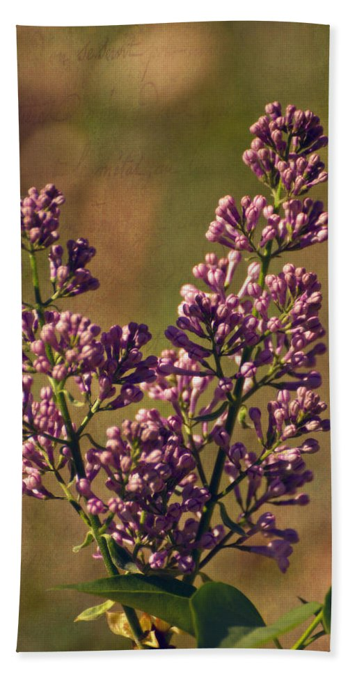 Vintage Lilac Hand Towel featuring the photograph Vintage Lilac by Mel Hensley