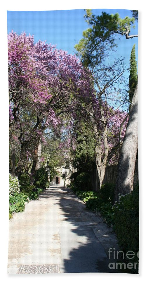 Alley Bath Sheet featuring the photograph Violet Tree Alley by Christiane Schulze Art And Photography