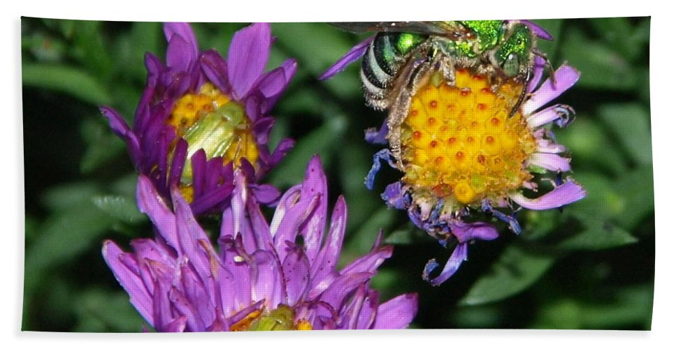 Peterson Hand Towel featuring the photograph Virescent Metallic Green Bee by James Peterson