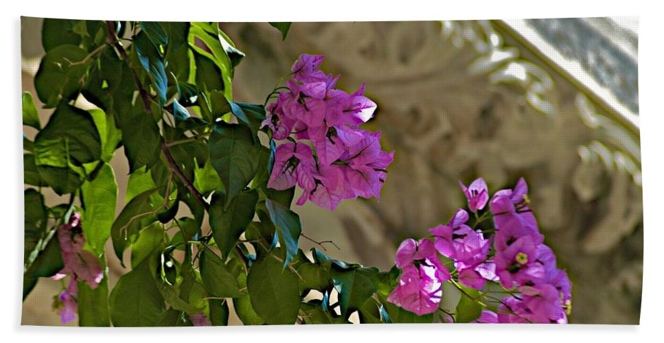 Bougainvillaea Hand Towel featuring the photograph Visions by Joseph Yarbrough