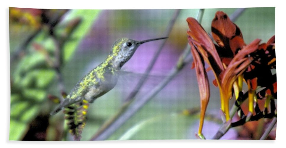 Birds Hand Towel featuring the photograph Vitality Of A Hummingbird by Jeff Swan