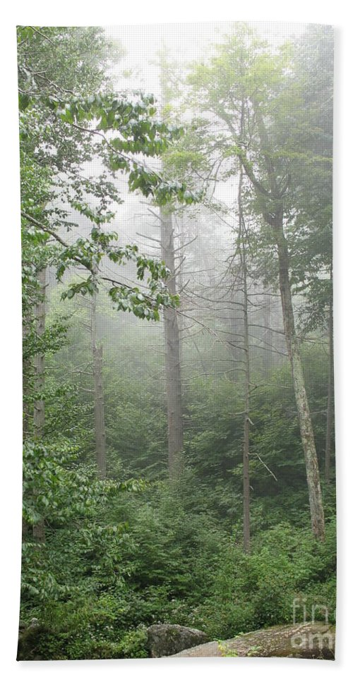 Mist Bath Sheet featuring the photograph Waft Of Mist - Shenandoah Park by Christiane Schulze Art And Photography