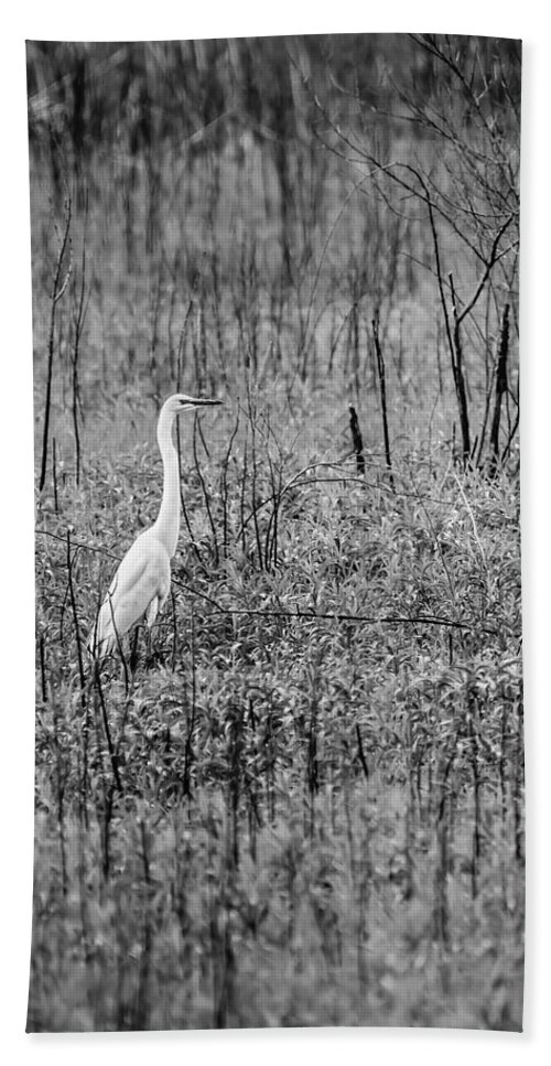 Racine County Bath Sheet featuring the photograph Waiting by Steven Santamour