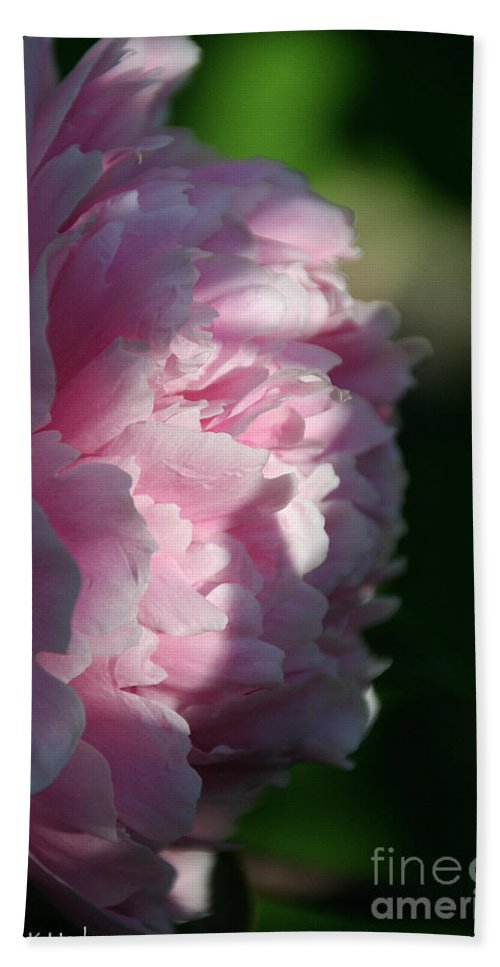 Flower Bath Sheet featuring the photograph Wake Up Pink Peony by Susan Herber