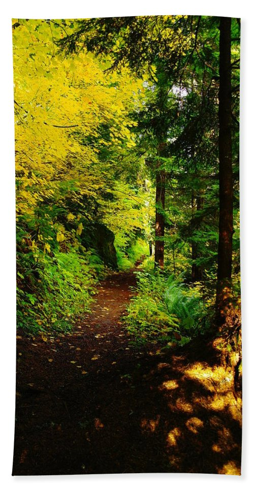 Leaves Hand Towel featuring the photograph Walking An Autumn Path by Jeff Swan