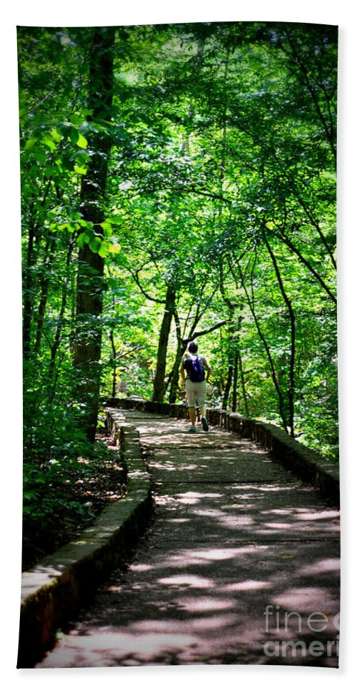 Trees Hand Towel featuring the photograph Walking The Path by Lydia Holly