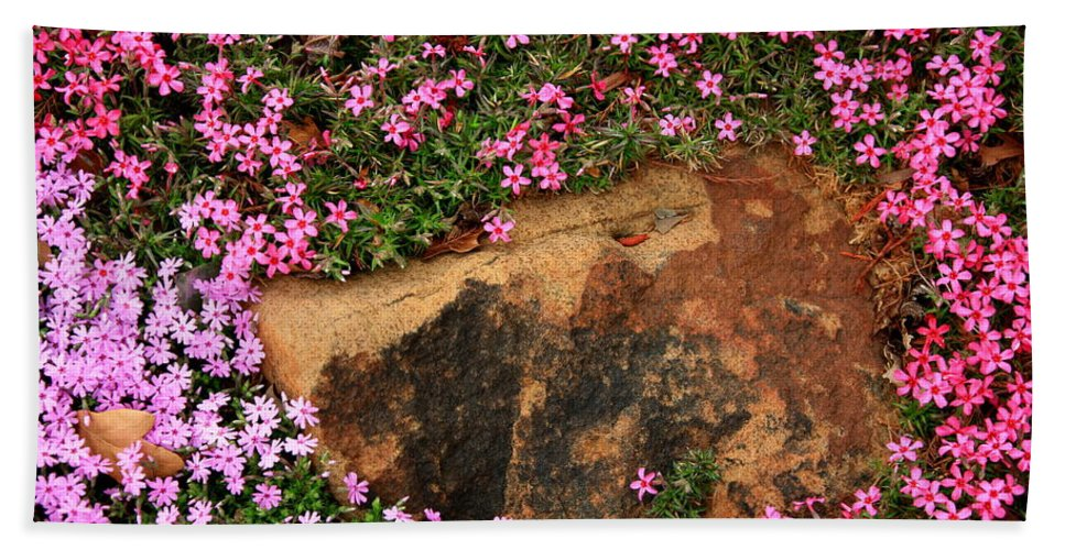 Landscape Hand Towel featuring the photograph Wallflowers 3 by Gary Emilio Cavalieri