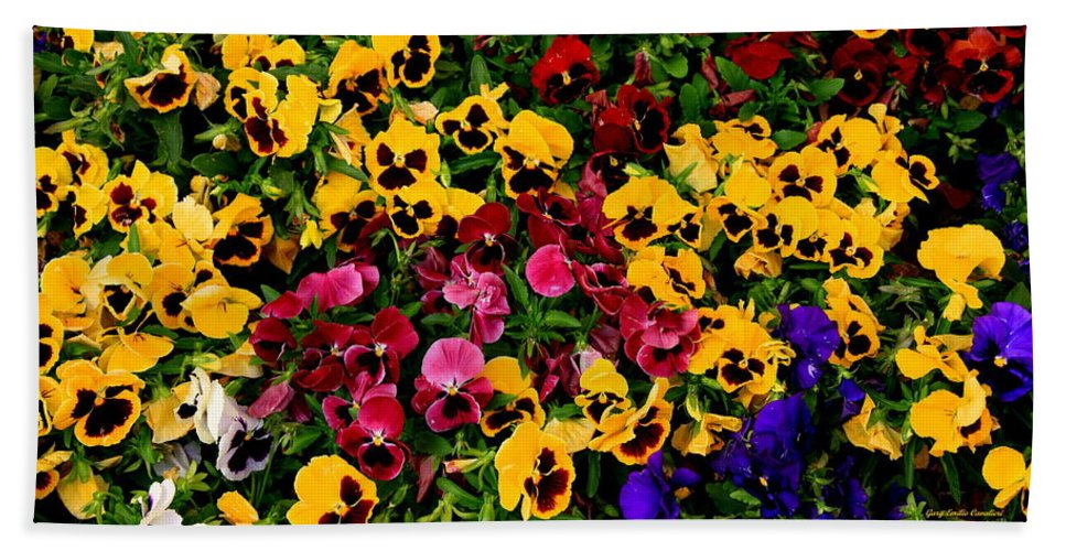 Landscape Hand Towel featuring the photograph Wallflowers by Gary Emilio Cavalieri