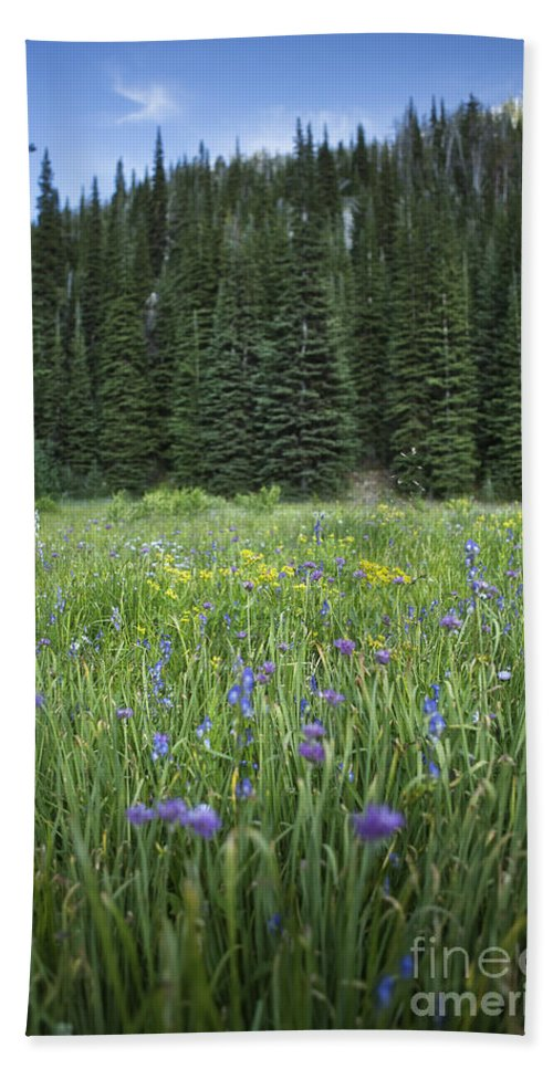 Wallowa Hand Towel featuring the photograph Wallowa Wildflowers by Belinda Greb