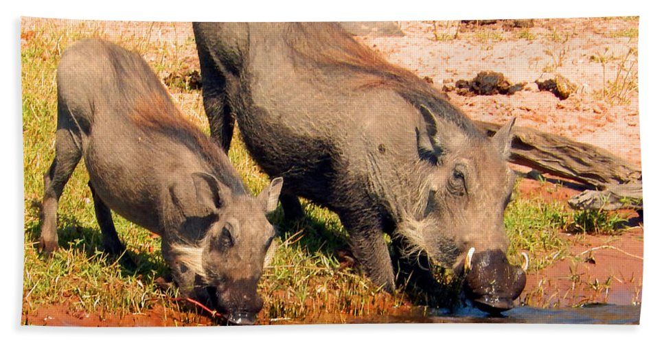 Warthog Bath Sheet featuring the photograph Warthog Family by Carolyn Jarvis