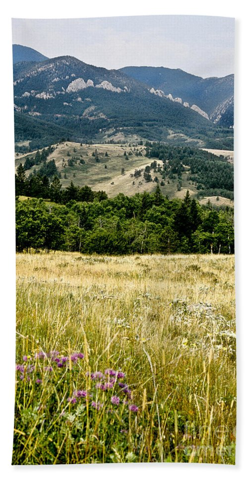 Wilderness Hand Towel featuring the photograph Washake Wilderness by Kathy McClure