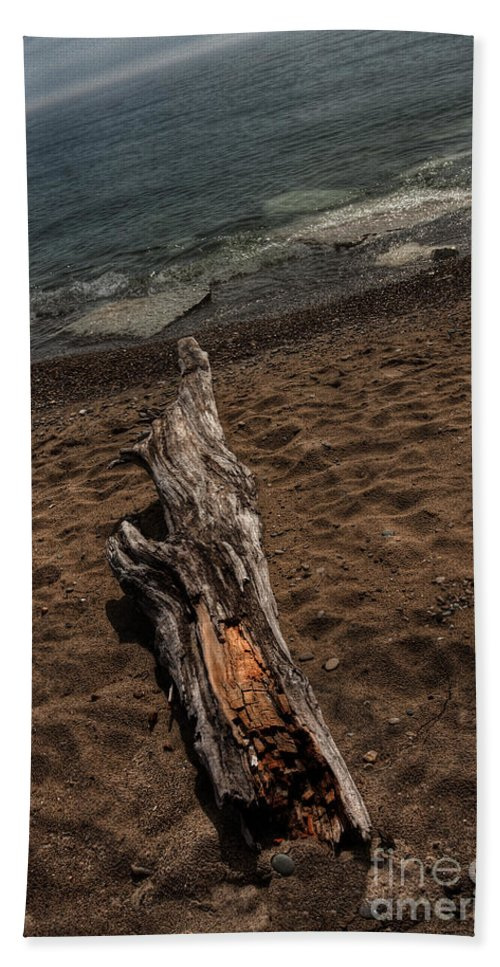 Alone; Beach; Sand; Rocks; Pebbles; Calm; Serene; Water; Sea; Ocean; Lake; Horizon; Coast; Empty; Sky; Quiet; Outside; Outdoors; Paradise; Shore; Waves; Wood; Dead; Stump; Hdr; Crooked; Shoreline Waters Edge Hand Towel featuring the photograph Washed Ashore by Margie Hurwich