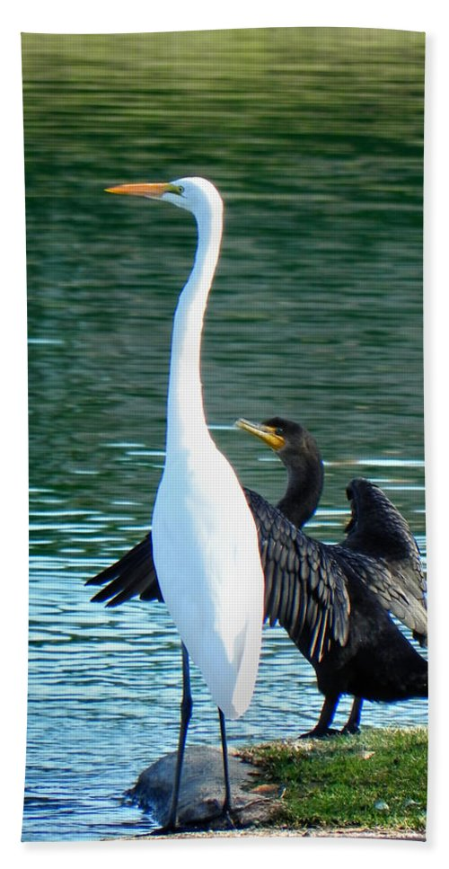 Heron Bath Sheet featuring the photograph Watch This by Deb Halloran