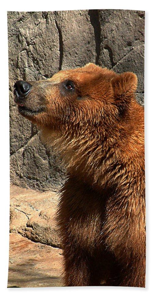 Bear Bath Sheet featuring the photograph Watching The Sun Set by RC DeWinter