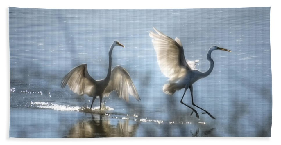 White Egret Bath Towel featuring the photograph Water Ballet by Saija Lehtonen
