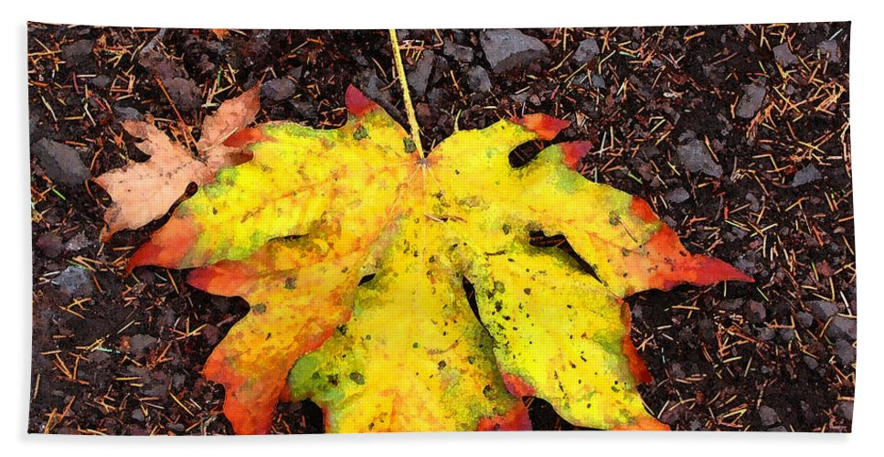 Autumn Bath Sheet featuring the photograph Water Colored Leaf - Autumn by Marie Jamieson