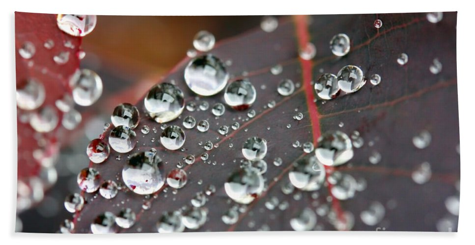 Water Hand Towel featuring the photograph Water Drops On Cotinus by Simon Bratt Photography LRPS