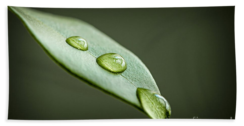 Leaf Hand Towel featuring the photograph Water Drops On Green Leaf by Elena Elisseeva