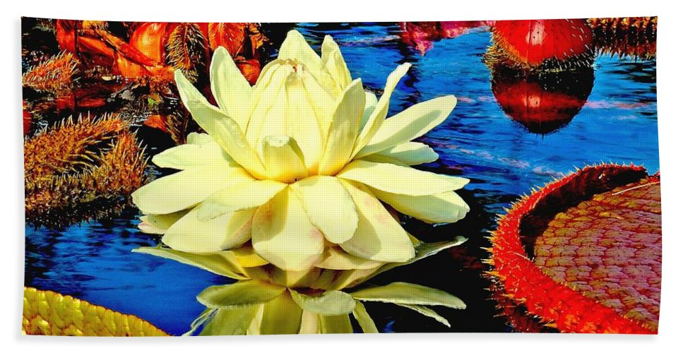 Aquatic Bath Sheet featuring the photograph Water Lilly Pond by Nick Zelinsky