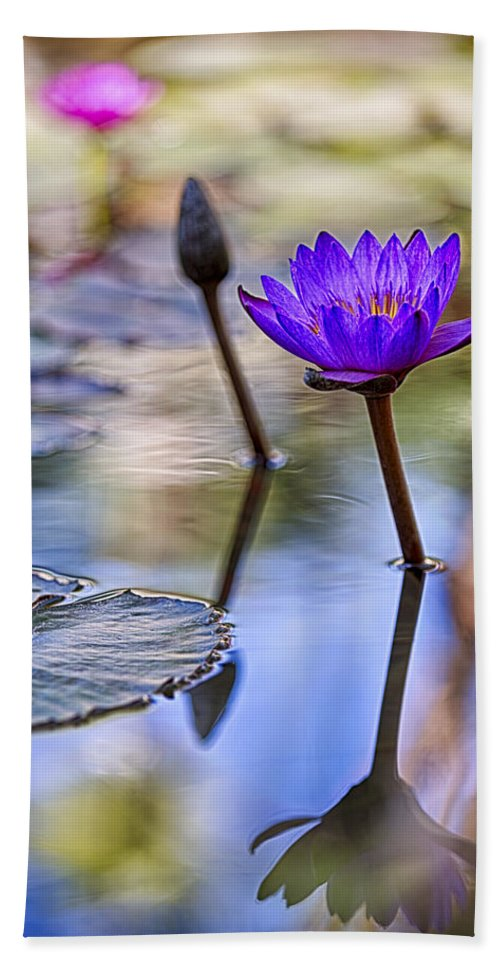 Water Lily Hand Towel featuring the photograph Water Lily 6 by Scott Campbell