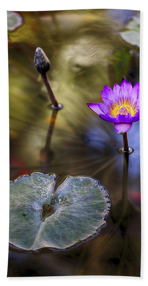 Water Lily Hand Towel featuring the photograph Water Lily 7 by Scott Campbell