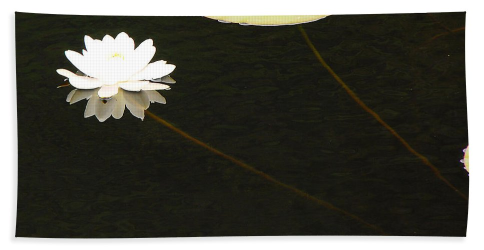 Flower Hand Towel featuring the photograph Water Lily by Mary Carol Story