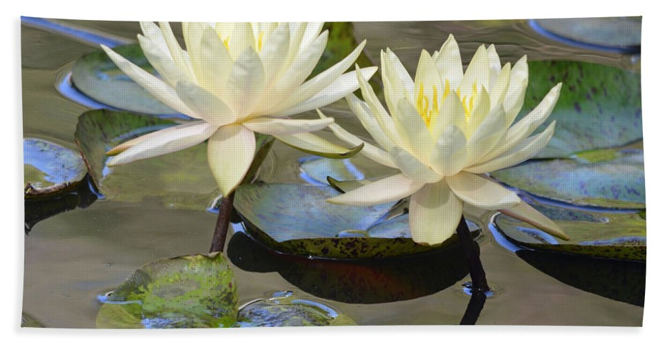 Lily Bath Sheet featuring the photograph Water Lily Pair by Richard Bryce and Family