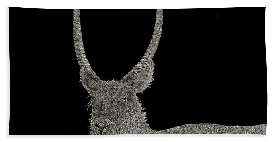 Florida Bath Sheet featuring the photograph Waterbuck B W Abstract by Mark Fuge