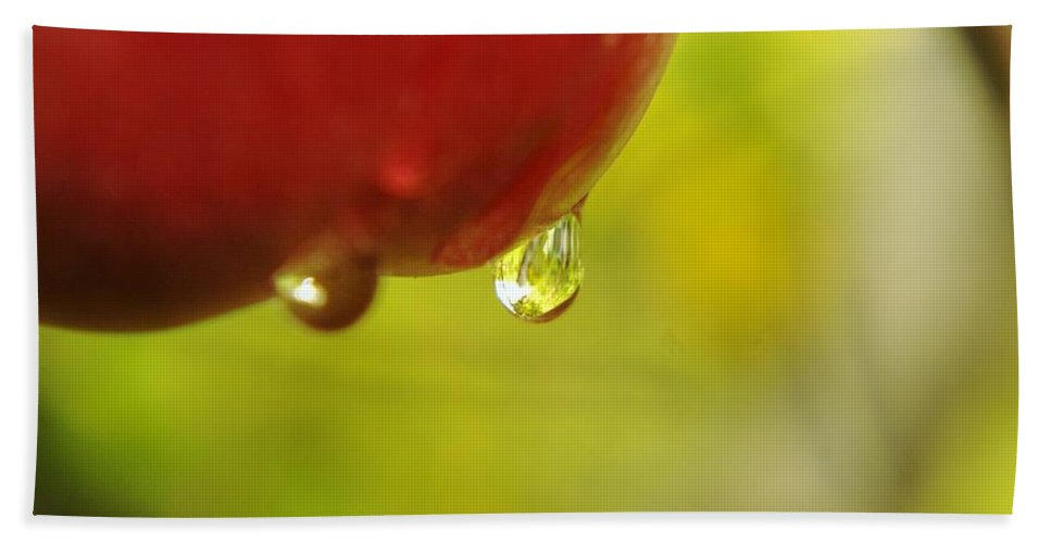 Fruit Hand Towel featuring the photograph Waterdrop Sliding Off An Apple by Jeff Swan