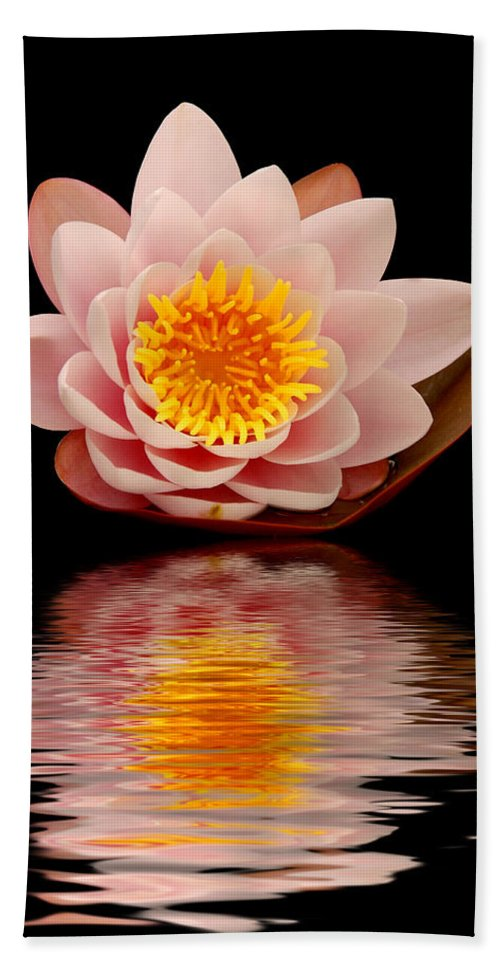 Aquatic Hand Towel featuring the photograph Waterlily by TouTouke A Y