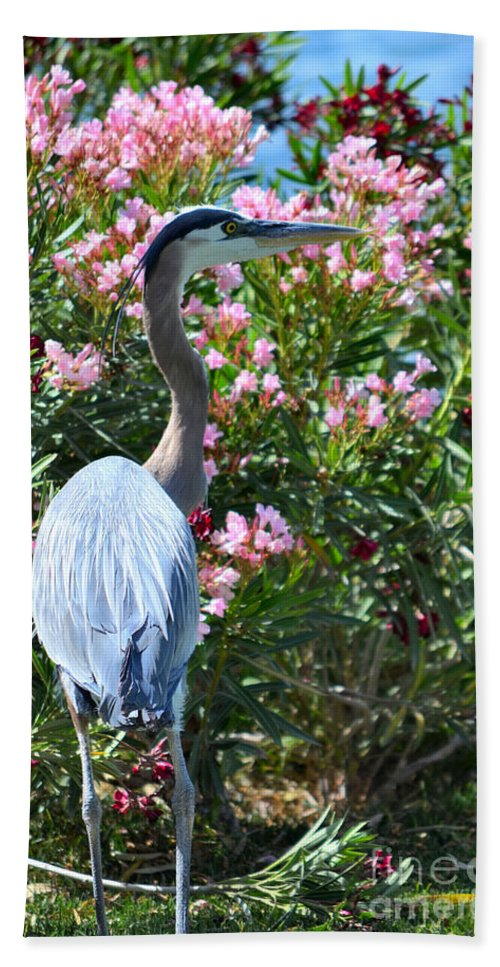 Great Blue Heron Hand Towel featuring the photograph Waters Edge by Deb Halloran