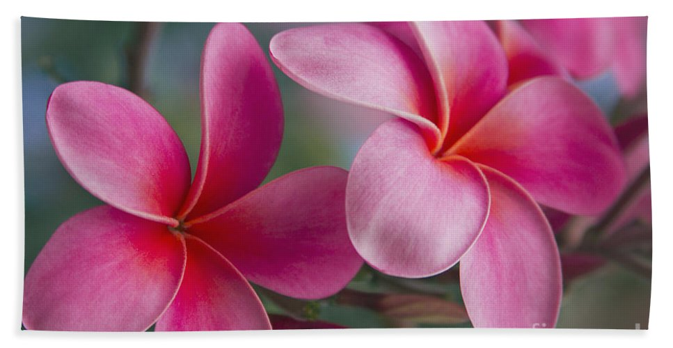 Pink Plumeria Bath Sheet featuring the photograph We Were Together . . . by Sharon Mau