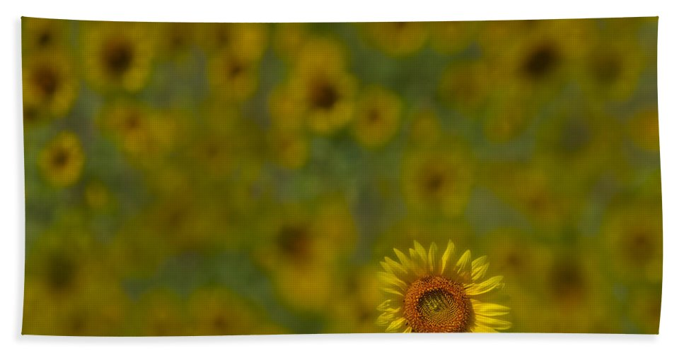 Petals Hand Towel featuring the photograph We Worship The Sun by Susan Candelario